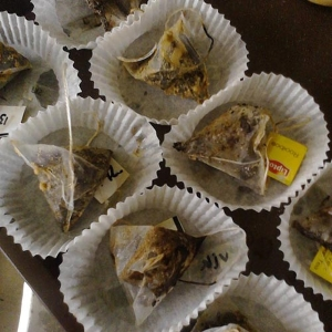 Drying tea Sept 2014. By J. Sarneel
